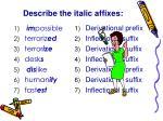 describe the italic affixes