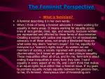 the feminist perspective