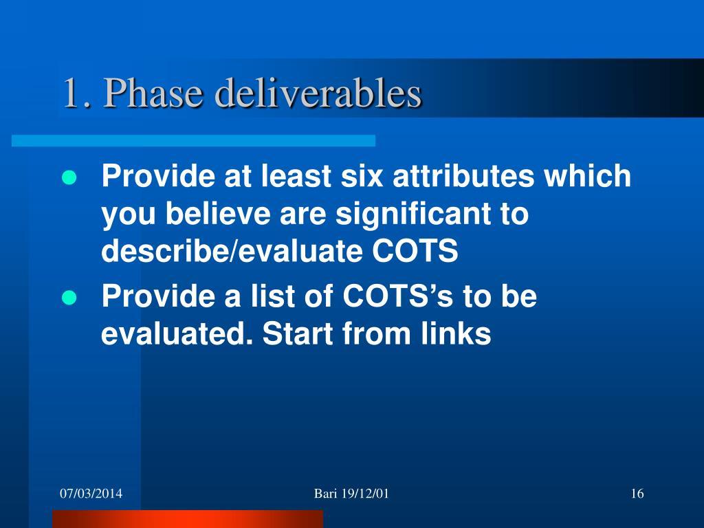 1. Phase deliverables