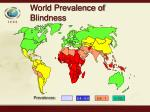 world prevalence of blindness