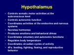 hypothalamus34