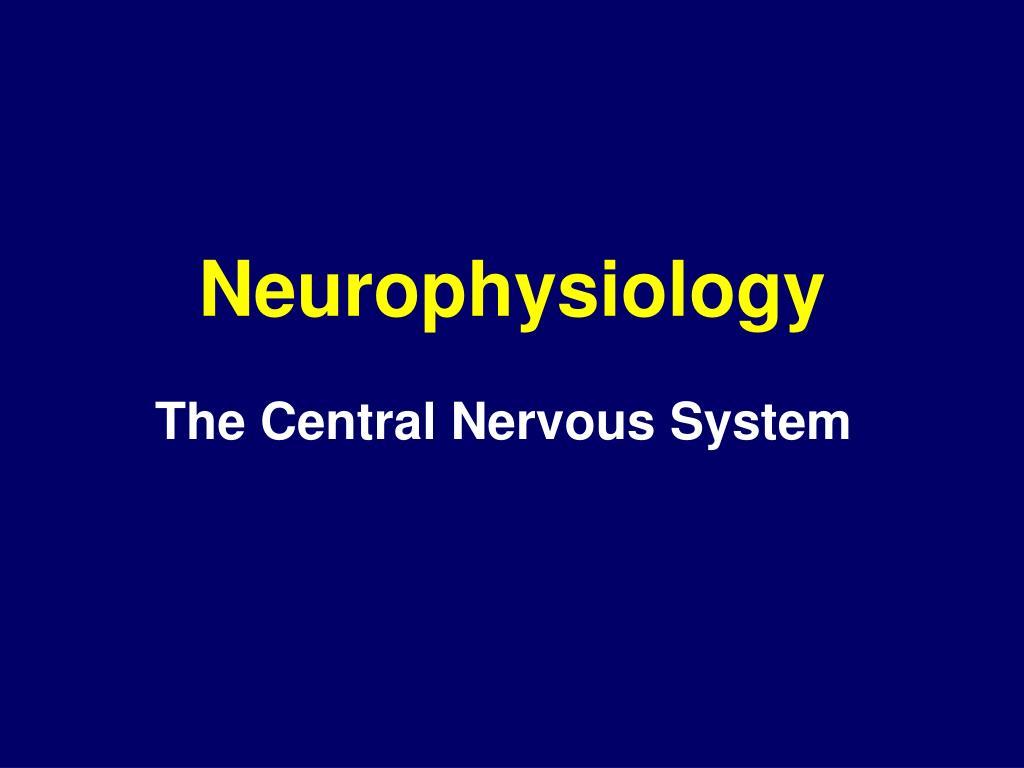 neurophysiology l.