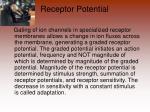 receptor potential