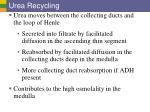 urea recycling