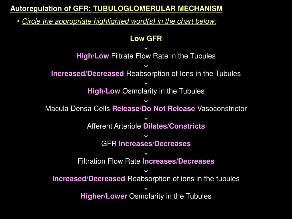 Autoregulation of GFR: