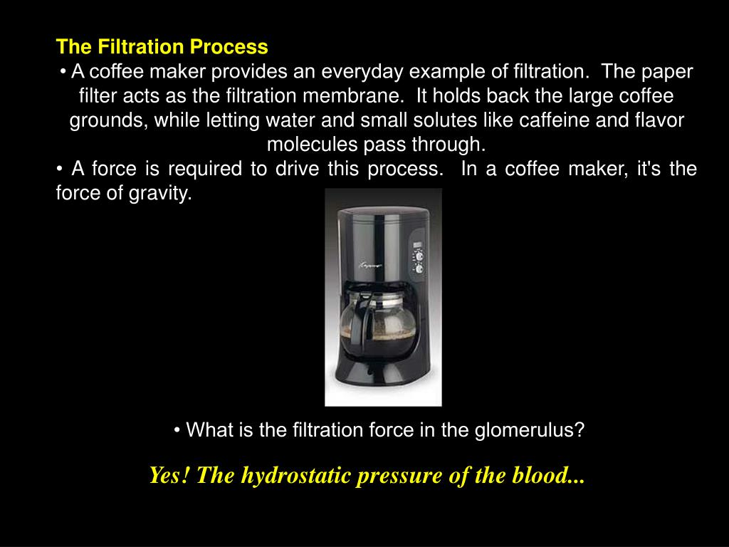 The Filtration Process