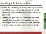 inserting a column or row