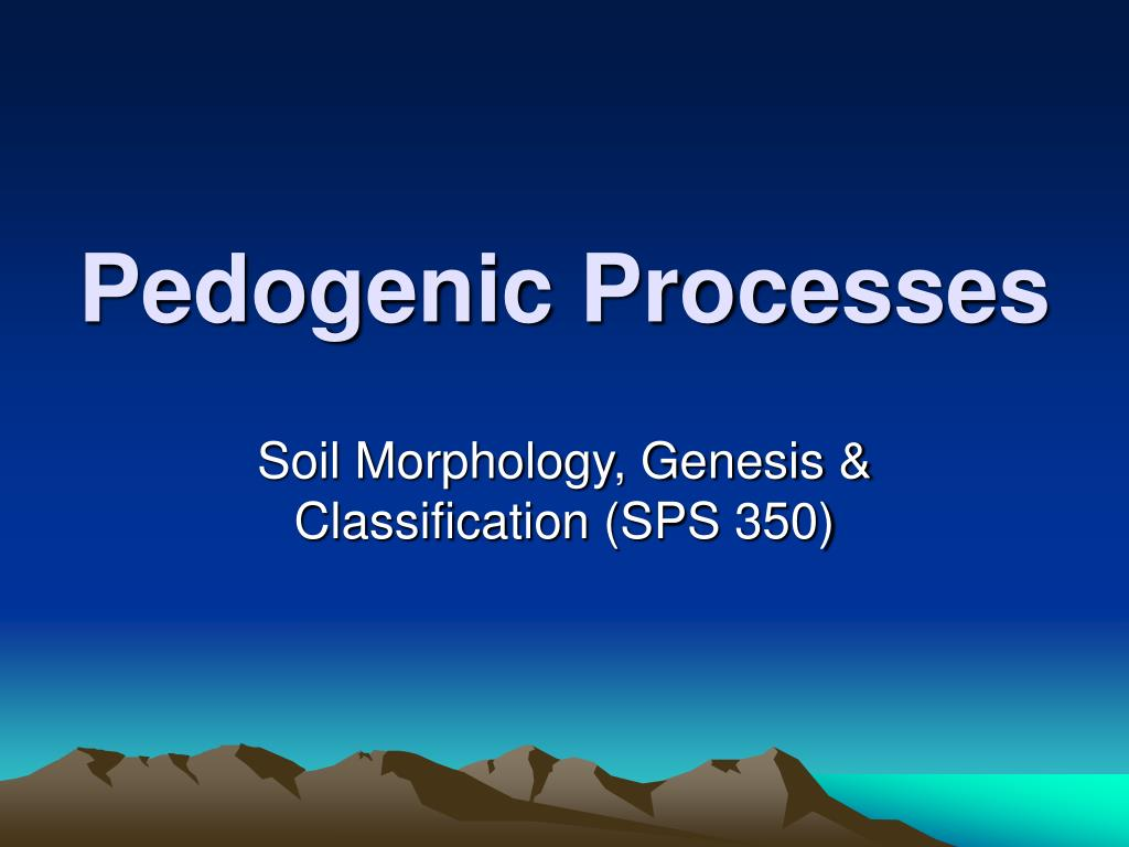 pedogenic processes l.