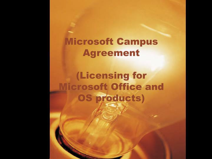 Microsoft campus agreement licensing for microsoft office and os products