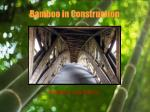 bamboo in construction11