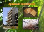 bamboo in construction12