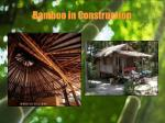 bamboo in construction13