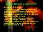 why is bamboo important