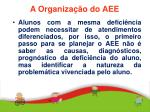 a organiza o do aee