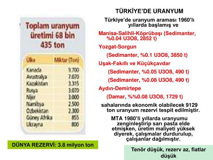 TÜRKİYE'DE URANYUM
