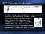 eeg e lectroencephalography