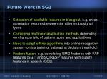 future work in sg339