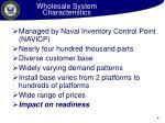 wholesale system characteristics