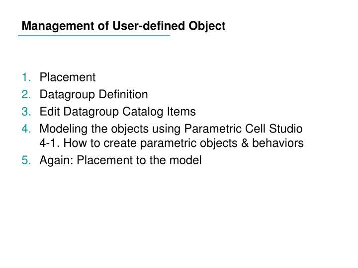 Management of User-defined Object
