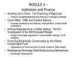 module 4 institutions and finance