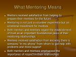 what mentoring means