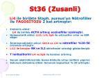 st36 zusanli