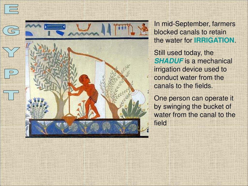 In mid-September, farmers blocked canals to retain the water for