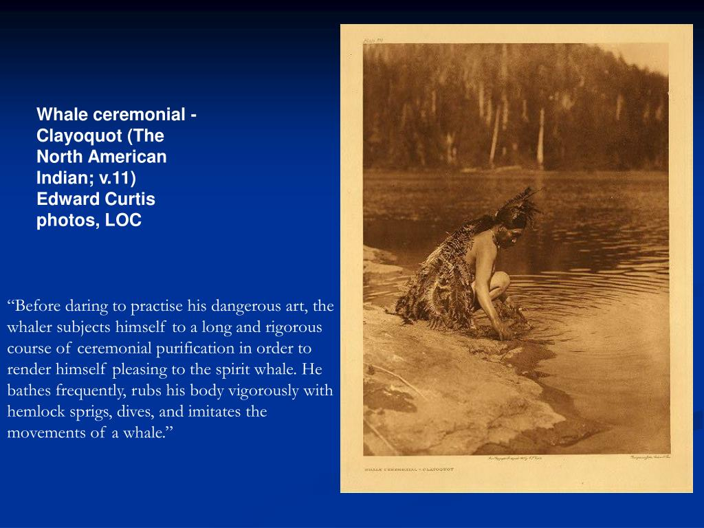Whale ceremonial - Clayoquot (The North American Indian; v.11) Edward Curtis photos, LOC