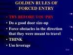 golden rules of forced entry