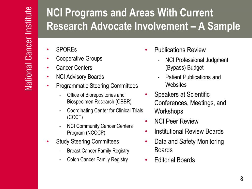 NCI Programs and Areas With Current Research Advocate Involvement – A Sample