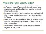 what is the family security index