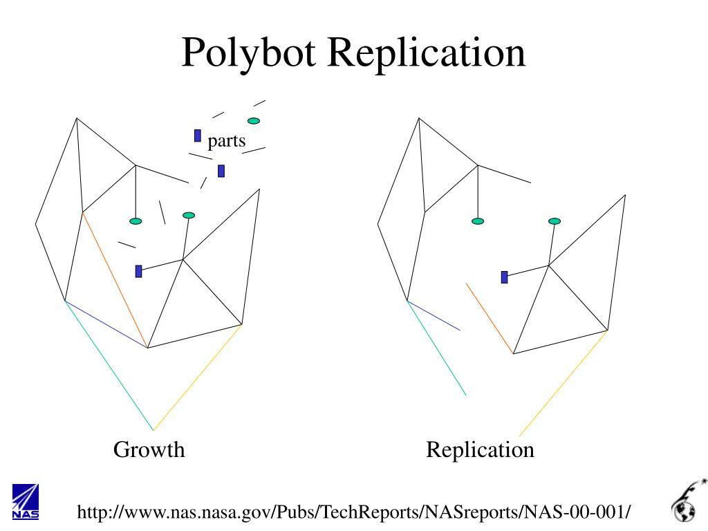 Polybot Replication