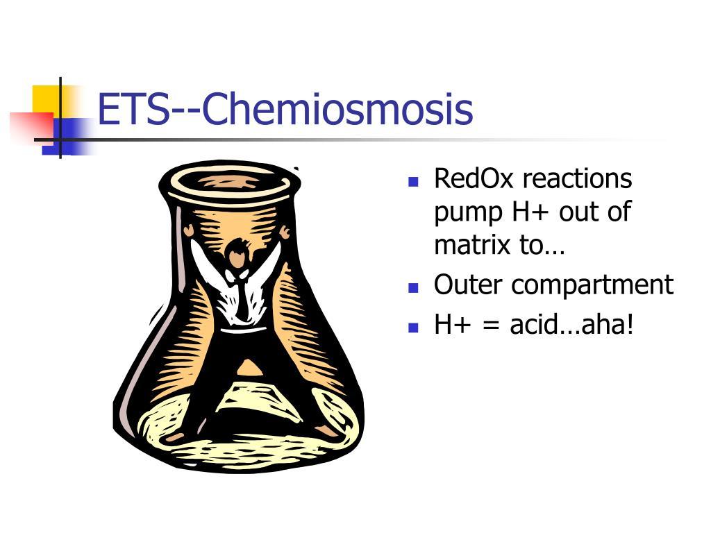 ETS--Chemiosmosis