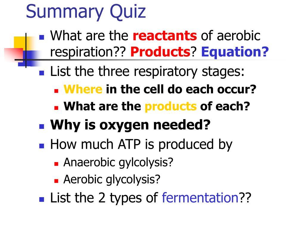Summary Quiz