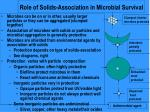 role of solids association in microbial survival