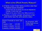 what is the official poverty measure