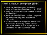small medium enterprises smes