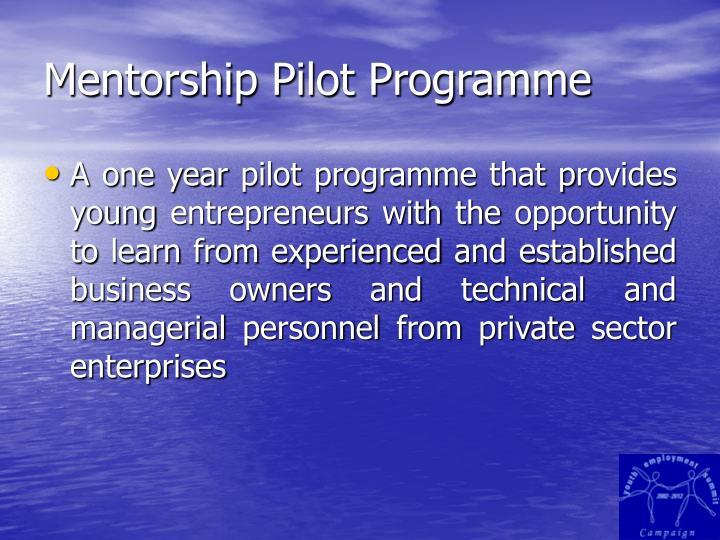 Mentorship pilot programme