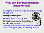 what can self determination mean for you