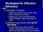 strategies for effective advocacy11