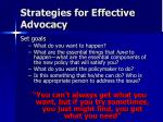 strategies for effective advocacy6