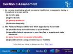 section 3 assessment24