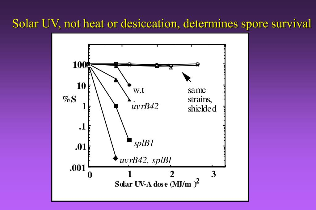 Solar UV, not heat or desiccation, determines spore survival