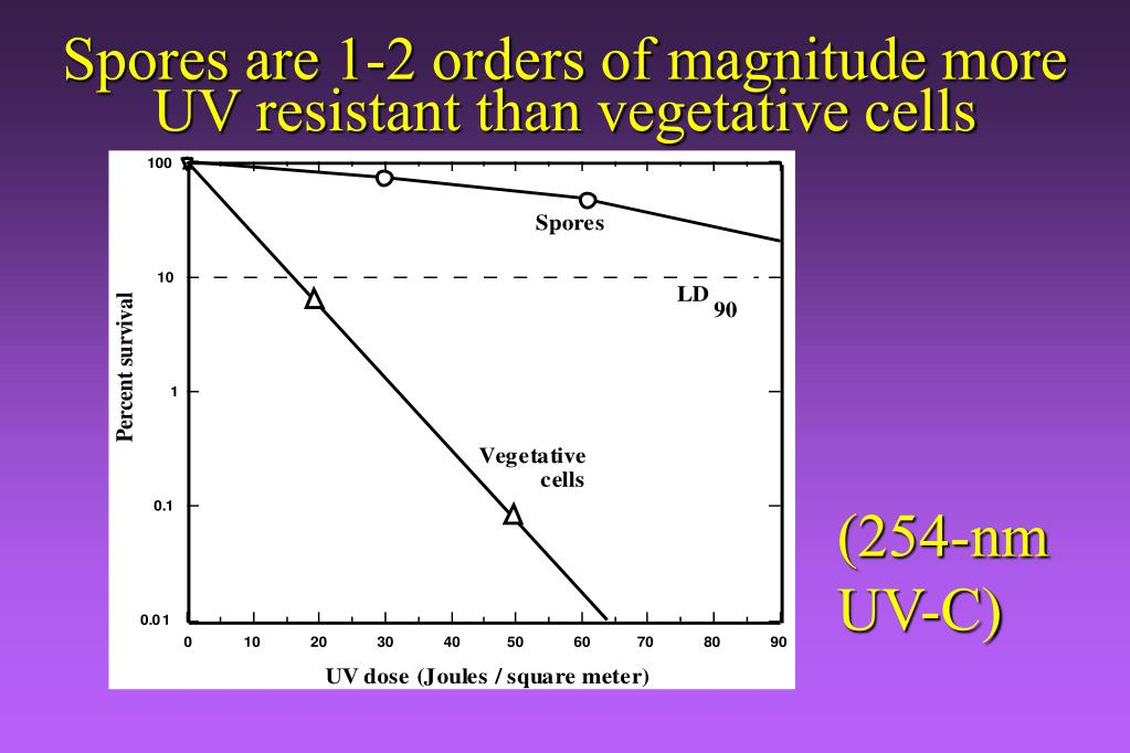 Spores are 1-2 orders of magnitude more UV resistant than vegetative cells