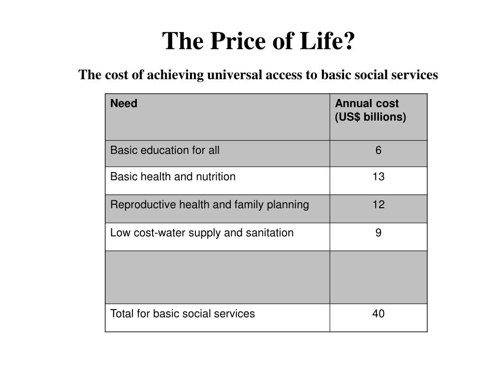 The cost of achieving universal access to basic social services