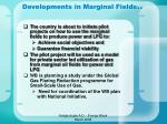 developments in marginal fields