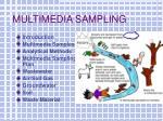 multimedia sampling