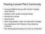 floating leaved plant community