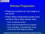 witness preparation