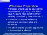 witnesses preparation